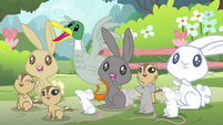 Fluttershy's animal friends cheering Fluttershy S4E14