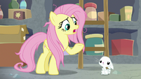 """Fluttershy """"we can't go on like this"""" S9E18"""