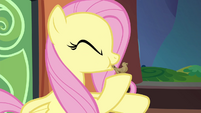 Fluttershy blowing bird whistle S4E22