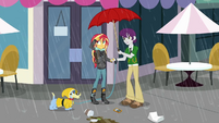 Indigo shares his umbrella with Sunset SS6
