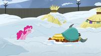 Pinkie Pie -fine, be stubborn!- S7E11