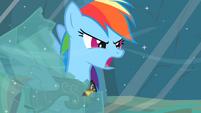 Rainbow Dash -Earth ponies are numbskulls!- S2E11