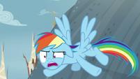"""Rainbow Dash annoyed """"again?"""" S8E2"""