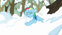 Rainbow removes the snow off of her head S5E5