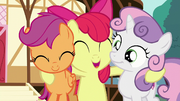 "Apple Bloom ""we'll be better!"" S6E4.png"
