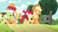 Apple Bloom pointing toward the field S9E10