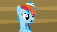 "Rainbow Dash ""it's 'throw in the towel'"" S9E6"