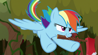 Rainbow flying with axe in her mouth S9E2