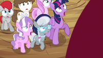 Twilight and foals watch apple grow S4E15