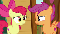 Apple Bloom and Scootaloo look at each other S6E19