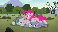 "Pinkie Pie ""I really owe Mudbriar an apology"" S8E3"