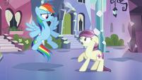 Rainbow Dash 'Come on' S3E1