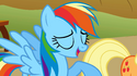 Rainbow Dash eye error S1E13