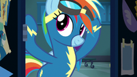 Rainbow Dash putting her goggles on S8E5