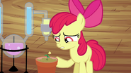 S04E15 Niepewna Apple Bloom
