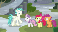 Sweetie Belle -your dad's certainly outgoing- S8E6