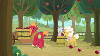 Goldie Delicious puts apple on a barrel S9E10