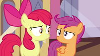 Scootaloo and Apple Bloom looking at each other S4E15