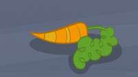 Single carrot on the ground S9E26