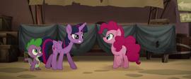 Twilight Sparkle scolding Pinkie Pie MLPTM