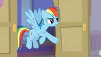 Rainbow Dash calling on Silverstream S8E16