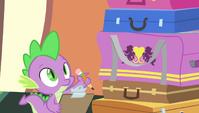 Spike with a checklist S4E24