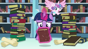 Twilight levitates Hayhoof's Intonements S6E2.png