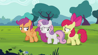 Apple Bloom -bringin' guests yesterday- S4E15
