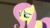 Fluttershy apologizing to the animals S7E5