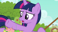 Twilight --following Applejack's list to the letter-- S6E10