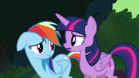 """Twilight and Rainbow """"more going on here than meets the eye"""" S4E04"""