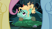 Zephyr Breeze looking up at Fluttershy S6E11
