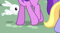 Bunny Fluttershy hopping around ponies' hooves S9E18