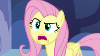 """Fluttershy """"I don't know what I'm gonna do"""" S7E14"""