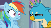 Gallus challenging Rainbow Dash's coolness S8E1.png