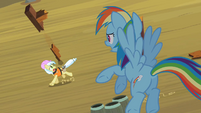 Rainbow Dash Helping Ambrosia S2E08