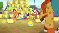 S05E06 Clowni na rodeo żąglują