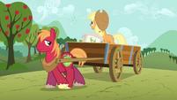 Applejack and Big Mac planting seeds S03E13