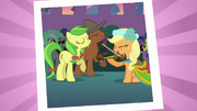 Applejack playing the fiddle S2E26.png