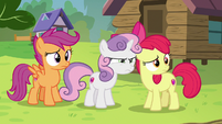 Cutie Mark Crusaders looking at Kettle Corn S7E21