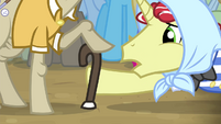 Flim pointing at old pony's legs S4E20