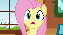 Fluttershy's late for a very important date S01E22