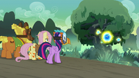 Fluttershy, Twilight, and Cattail approach the flash bee tree S7E20