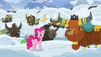 Pinkie Pie offers to get help from Ponyville S7E11