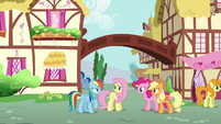 Rainbow --just had lunch with Fluttershy's parents-- S6E11