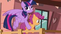 Twilight rolls her eyes in amusement S8E20