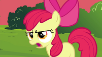 """Apple Bloom """"Wow, that's"""" S4E15"""