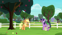 Applejack --if they ever apologized-- S6E22