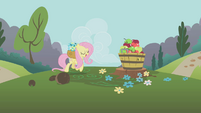 Fluttershy and apples S1E10