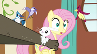 Fluttershy being snatched S3E13